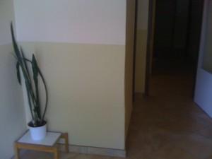 Malování chodby panelového domu v Praze