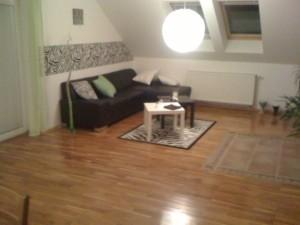 Malování velkého bytu v Praze 1